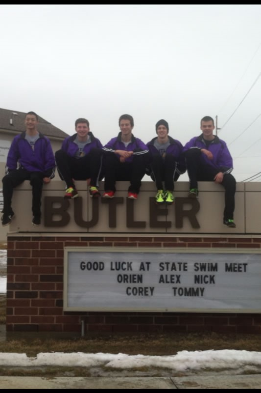 Competitive drive sends four aviators swimmers on to state - Vandalia rec center swimming pool ...
